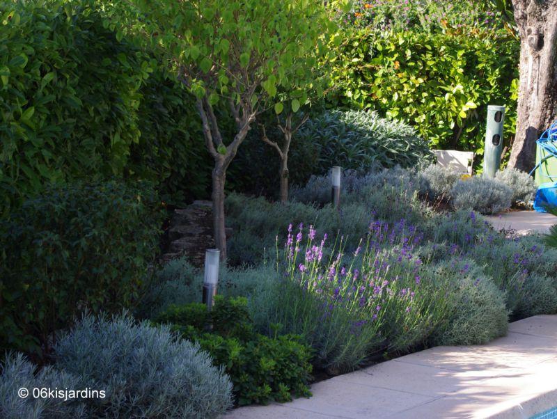 Superior Amenagement Jardin Exterieur Mediterraneen 1 Plantes Et ...